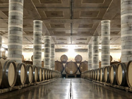 best wine tour in tuscany